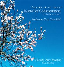 Write it all down - your Journal of Consciousness